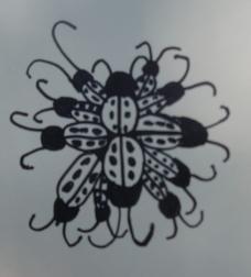 Lady Bug Cluster Grade 3