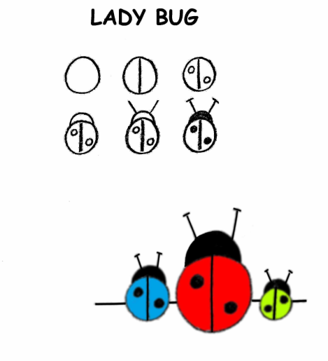 draw step by step, draw ladybug for 3 to 5 year old,